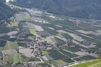 Die klimatischen Bedingungen in Südtirol - fast mediterran -  sind nahezu ideal für das Heranreifen von Äpfeln.