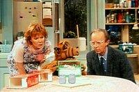 Willie (Max Wright, r.) und Kate (Anne Schedeen, l.) lassen sich von Alf (M.) über die wunderbare Welt der Ameisen aufklären ...