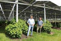 Die Landwirte Fabian Karthaus und Josef Kneer schützen ihre Heidelbeer- und Himbeersträucher durch ihre innovative Dachkonstruktion aus Photovoltaik-Modulen und produzieren dabei auch noch Strom.