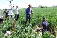 Wie verhalten sich Böden und resistente Pflanzensorten bei steigenden Temperaturen? Forscher der Ludwig-Maximilians-Universität München bei Feldversuchen.