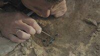 Jewgeni Bogdanow und sein Kollege Andrej Astafjew untersuchen ein riesiges Ausgrabungsfeld von 120 Hektar in der kasachischen Steppe. Die Funde übertreffen die Erwartungen der Wissenschaftler bei weitem.