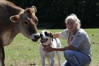 Susan Klingenberg mit ihrem Hund und ihrer Kuh