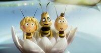 Biene Maja, Willi und Fetzer, die Hornisse, sind Freunde geworden.