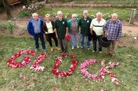 """Prächtig blühende Rosen sind für den Verein der Rosenfreunde in Schmittshausen das größte Glück. Im Rosengärtchen  von Deutschlands erstem Rosendorf legen die Vereinsmitglieder für uns das Wort """"Glück"""" aus Rosenblättern."""