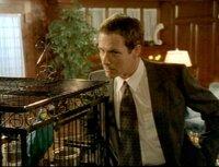 John (Nicholas Walker) hat seine Frau Allison, eine steinreiche Erbin, ermordet und der einzige Zeuge der Bluttat war ihr Papagei. Gerade als der Detectiv das Haus verlassen will gibt der Papagei ihm den entscheidenden Hinweiß...John (Nicholas Walker) hat seine Frau Allison, eine steinreiche Erbin, ermordet und der einzige Zeuge der Bluttat war ihr Papagei. Gerade als der Detectiv das Haus verlassen will gibt der Papagei ihm den entscheidenden Hinweiü...