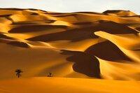 """ARD/WDR ERLEBNIS ERDE, """"Unbekanntes Afrika - Sahara"""", Ein Film von Matthew Wright, am Montag (11.11.13) um 20:15 Uhr im ERSTEN. Das Sandmeer von Libyen erstreckt sich über 1000000 Quadratkilometer. Hier zu überleben schaffen nur die Wenigsten. Manchmal erzeugen Milliarden rutschender Sandkörner ein gewaltiges Dröhnen - die Dünen """"singen""""."""