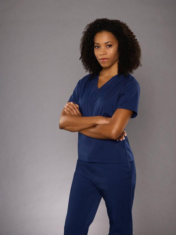 Grey's Anatomy: Wo du hingehörst (Back Where You Belong ...