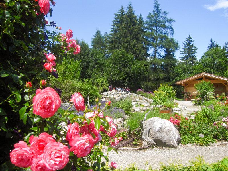 Natur im garten 2006 bilder tv wunschliste for Natur im garten