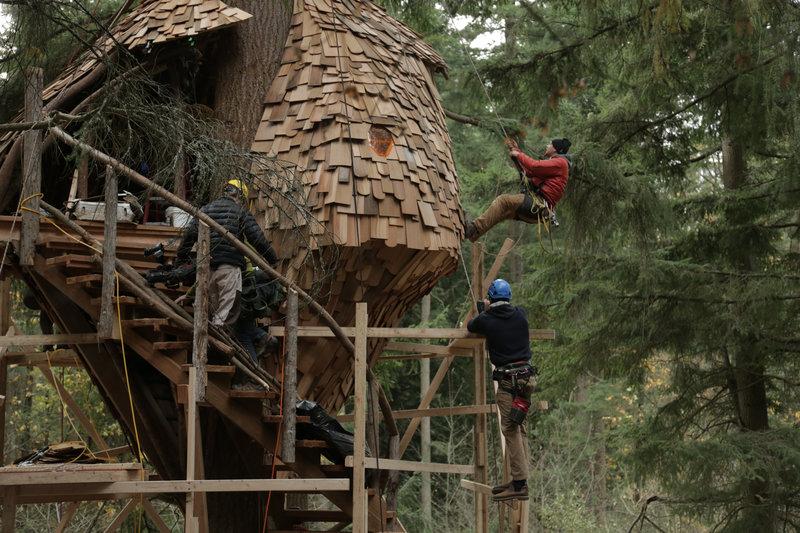 Die Baumhaus Profis