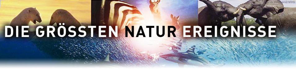 Die größten Naturschauspiele der Erde