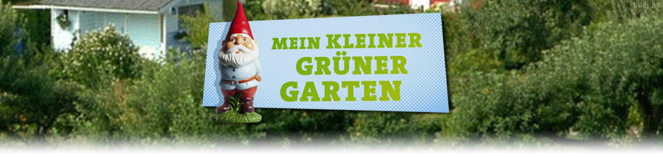 mein kleiner gr ner garten news termine streams auf tv. Black Bedroom Furniture Sets. Home Design Ideas