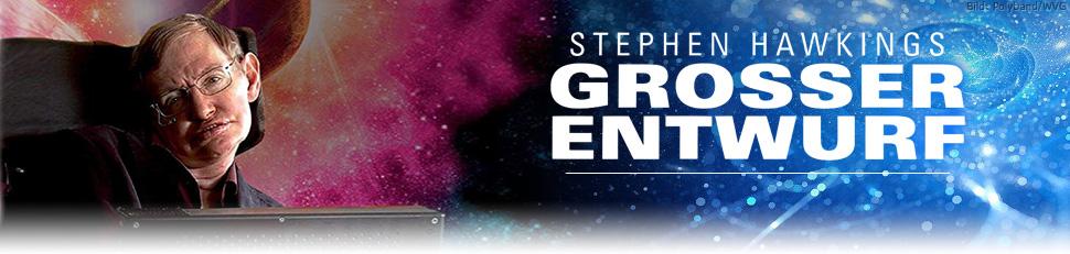 Stephen Hawking: Der große Entwurf