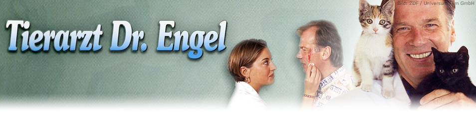 Tierarzt Dr Engel