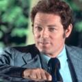 11 Staffeln als 'Danno Williams' in der Originalserie