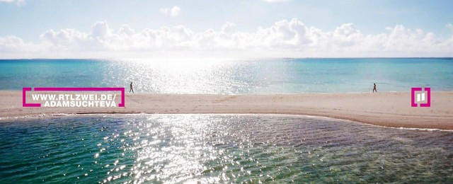 Insel-Kuppelshow kehrt 2020 zurück