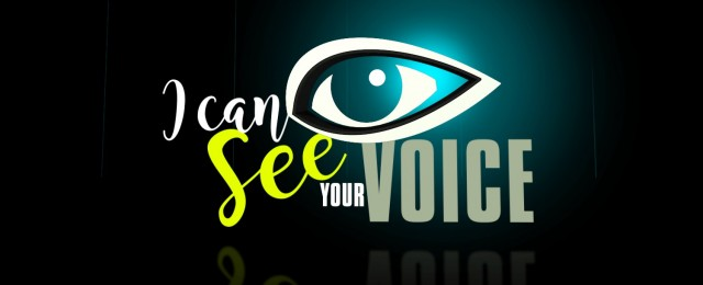 "Offizielle Adaption des südkoreanischen TV-Hits ""I Can See Your Voice"""