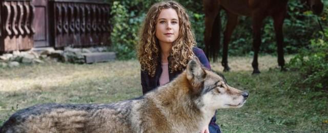 """""""Reiterhof Wildenstein"""" mit Klara Deutschmann: Ausstrahlung neuer Folgen in Sicht"""