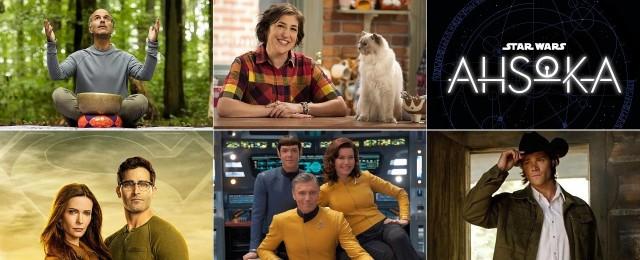 Die neuen Serien 2021 - Von Sci-Fi bis Comic, von Network bis Spin-Off