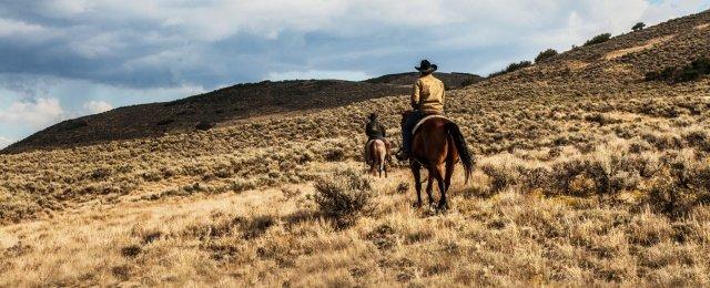 """""""Yellowstone""""-Schöpfer mit zweitem Spin-Off, neuen Serien bei Paramount+"""