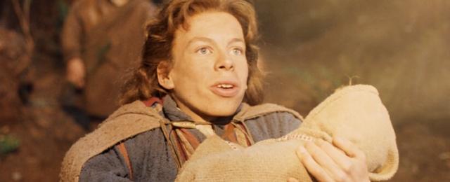 """""""Willow""""-Serie mit Warwick Davis auf Disney+ erhält Zuwachs"""