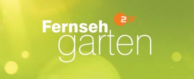 "Andrea Kiewel über neue ""Fernsehgarten""-Saison: ""Jetzt erst recht!"""