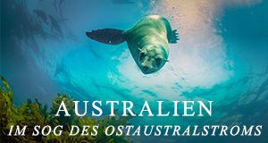 Australien - Im Sog des Ostaustralstroms