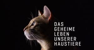 Das geheime Leben unserer Haustiere
