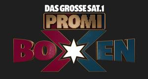 Das große Sat.1 Promiboxen