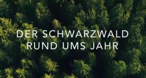 Der Schwarzwald rund ums Jahr