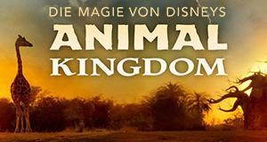 Die Magie von Disneys Animal Kingdom