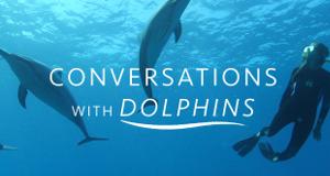 Die Sprache der Delfine