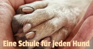 Eine Schule für jeden Hund