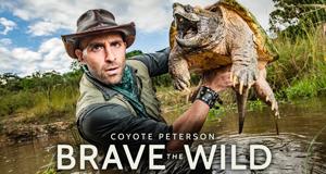Faszinierende Tierwelt mit Coyote Peterson