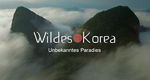 Geheimnisvolles Korea