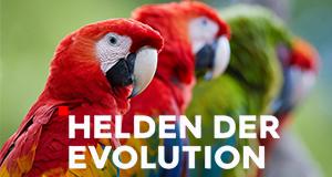 Helden der Evolution