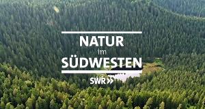 Natur im Südwesten