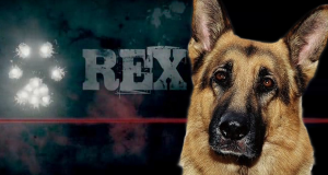 Serien Stream Kommissar Rex