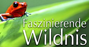 Faszinierende Wildnis