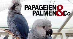 Papageien, Palmen & Co.