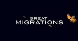Great Migrations - Das große Wunder der Tierwanderungen