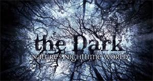 Geheimnisse der Nacht