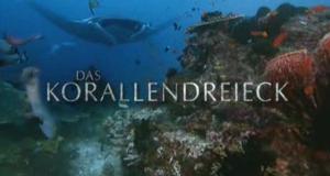 Das Korallendreieck