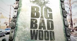 Big Bad Wood - Profis an der Kettensäge