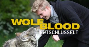 Wolfblood entschlüsselt