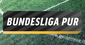 Bundesliga Pur