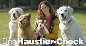 Der Haustier-Check