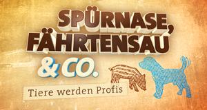 Spürnase, Fährtensau & Co.