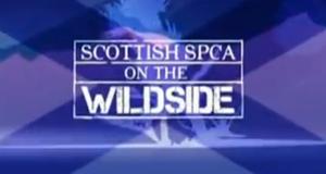 Tierrettung Schottland
