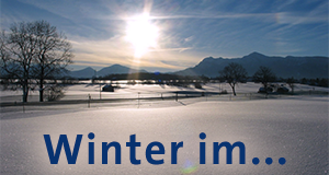 Winter im...