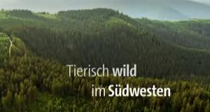 Tierisch wild im Südwesten